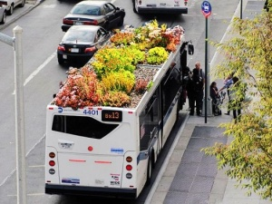 green-gardens-on-buses